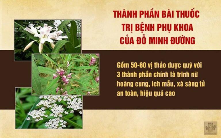 Bài thuốc Phụ Khang Đỗ Minh chữa bệnh phụ khoa được kết hợp từ các thảo dược hàng đầu